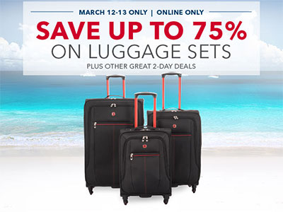 BestBuy 2-day Luggage Sale